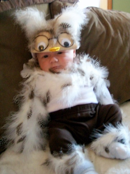 a hoot of a homemade costume displayed by liam 2 months sc 1 st care2