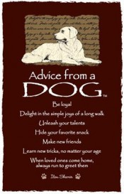 Advice from a Dog by Ilan Shamir