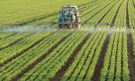 8 Formas que Monsanto destruye y destruyo nuestra salud