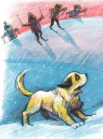 ski pup