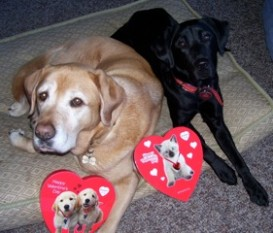 Ss & G Valentine's Day