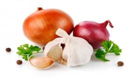 fresh garlic fruits with green parsley