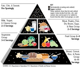 USDA old food pyramid