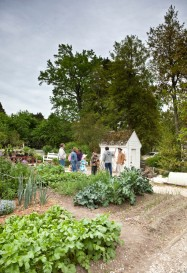 Start a Community Garden if you don't have your own