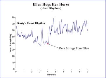 HRV pattern of Rusty