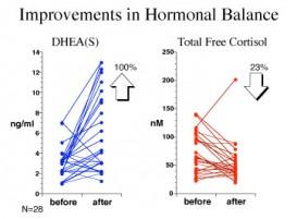DHEA Graph