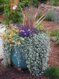 Edible planters for decks and patios