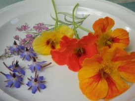 Start with delicious edible flowers