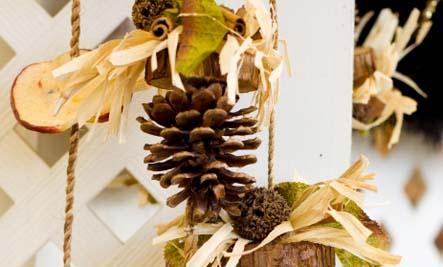 pine cones sachet