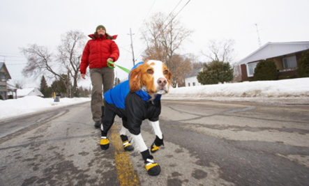Man walking with his dog to get exercise.