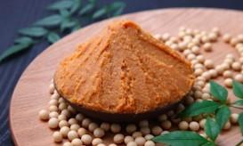 Miso paste in bowl
