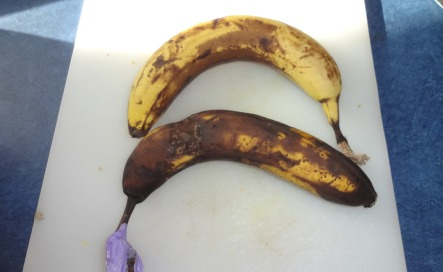 banana used for dr. Oz conditioner