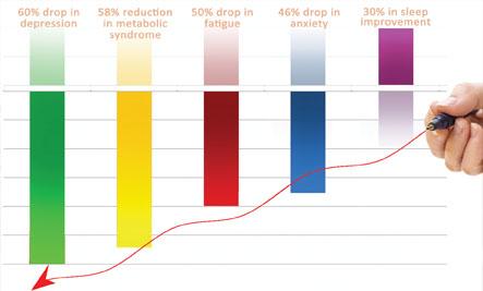 Stress Awareness - Graph