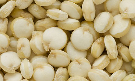 Quinoa close up