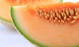 cantaloupe-melon-slice