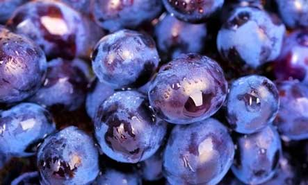 10 miracle healing powers of grapes care2 healthy living