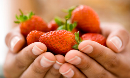 Strawberries are a food that controls blood sugar.