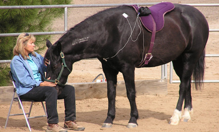 Dr Gehrke and her horse