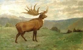 deerelk