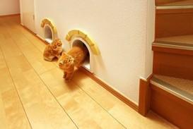 Jpanese cat house 3jpg