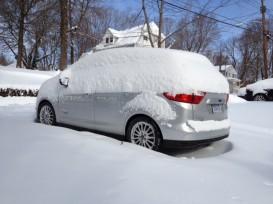 Snowy_C-Max