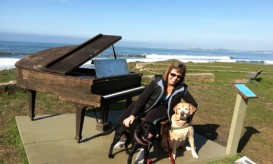 rsz_sunset_piano_with_dogs
