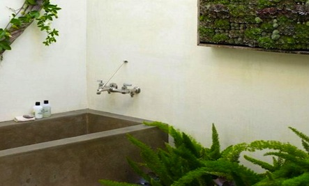 4 Inspiring Bathrooms With Plants