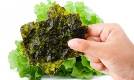 nori in front of salad