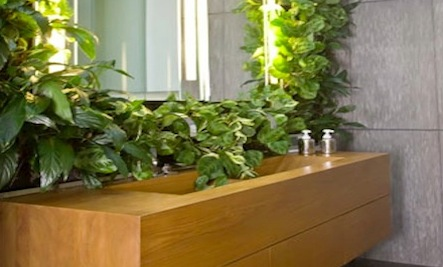 4 Inspiring Bathrooms With Plants | Care2 Healthy Living on best plants for basements, best plants for wet areas, best plants for zone 6b, best plants for containers patio, best plants for zone 10, best plants for atriums, best plants for high desert, best plants for feng shui, best plants for glass, best plants for privacy, best plants for sun room, best plants for entryway, plants that thrive in bathrooms, best plants for pool area, best plants for around a patio, best outdoor plants, best plants for water, best plants for gardening, best plants for dark rooms, best plants for decks,