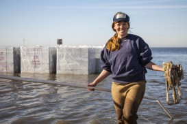 April 2013. The Nature Conservancy, its partners and over 500 volunteers started to build a 224-foot living shoreline at Pelican Point along Mobile Bay, Alabama.  In total, 20,500 interlocking concrete blocks will be stacked along the shore to form the fo
