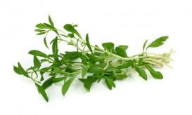 summersavory