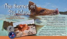 book-pig-island1