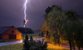 lightningtree