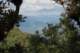 IMG_2396_Peter Ellis Buena Vista view web