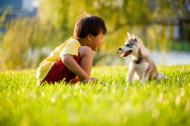 boy with husky pup