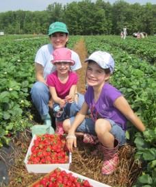 IMG_1361.jpg Sarene and daughters strawberries web