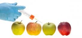 AppleGMO-syringe
