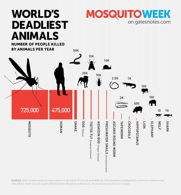 The Shocking 15 Deadliest Animals in the World