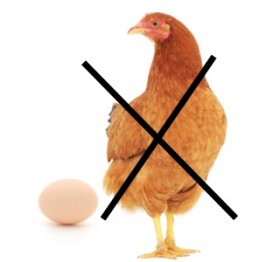 Flaxmeal is a often used egg replacer.