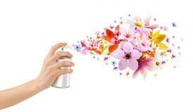 Air fresheners contain known carcinogens, suspected carcinogens, and neurtoxins.