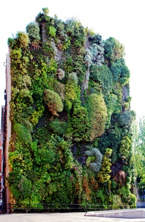 The Benefits Of Vertical Gardens How To Create One Care2
