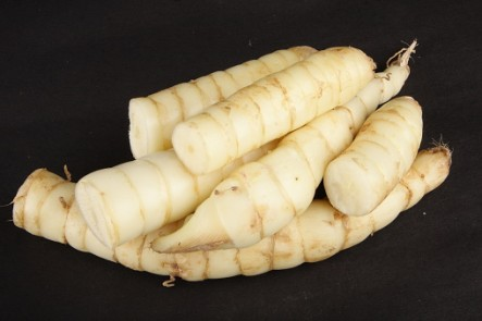 Raw Arrowroot