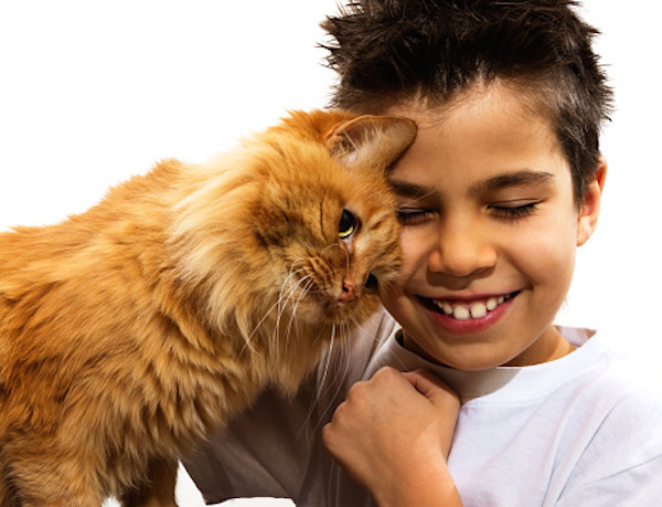 Photo: boy with cat
