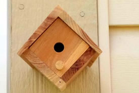 Mason bee home (Photo by Christine Beevis Trickett)