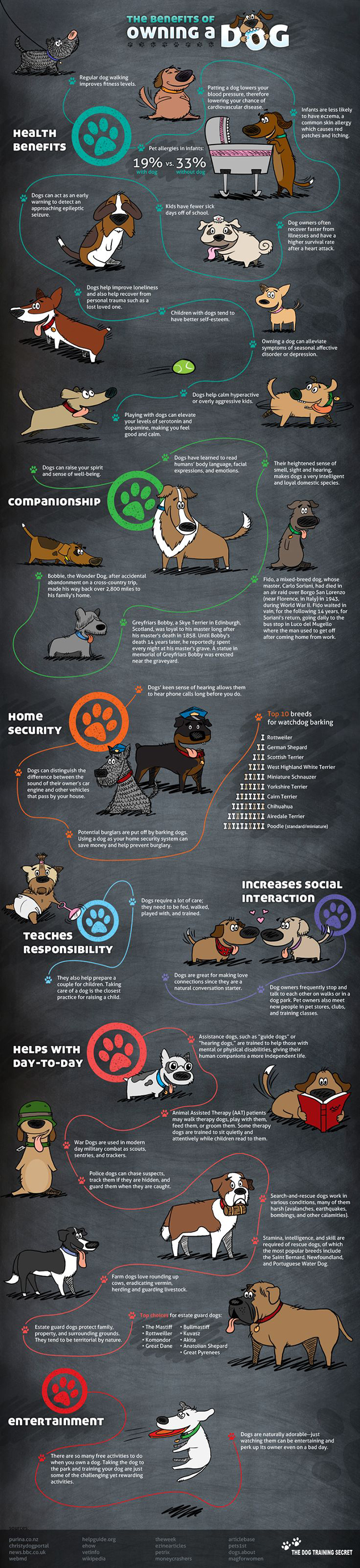 The 38 Benefits of Owning a Dog