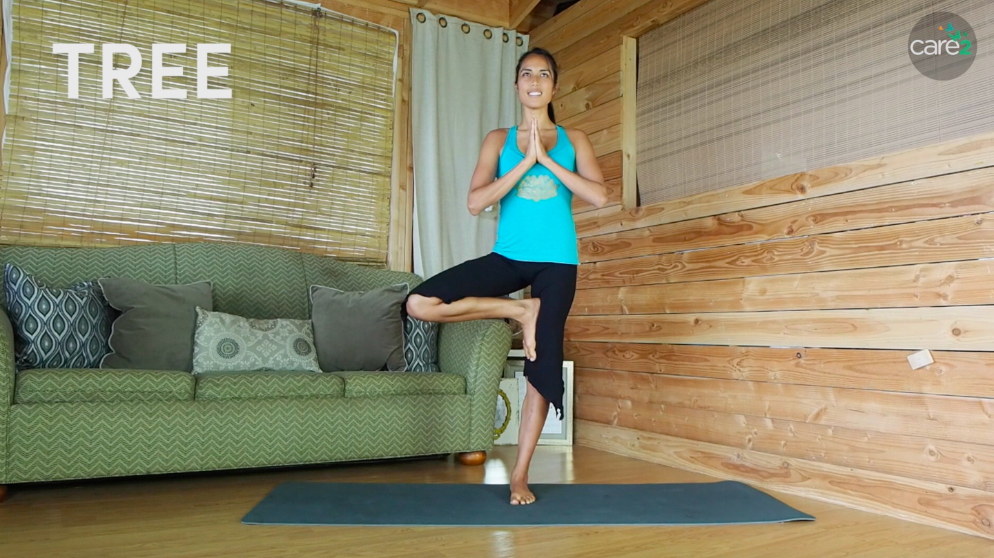In tree pose, you stand on one foot while tucking the other foot in your inner thigh or your calf muscle.