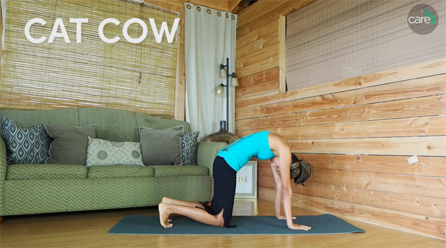 Cat-cow is a series of two yoga poses that's great for your back. Cow pose is shown in this image.