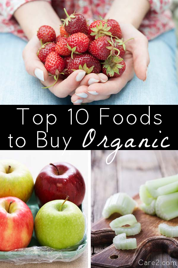 The EWG has released its 2016 Shopper's Guide, ranking 50 popular fruits and vegetables for pesticides. These are the ones that top their list, plus more on how and why to reduce your pesticide exposure.