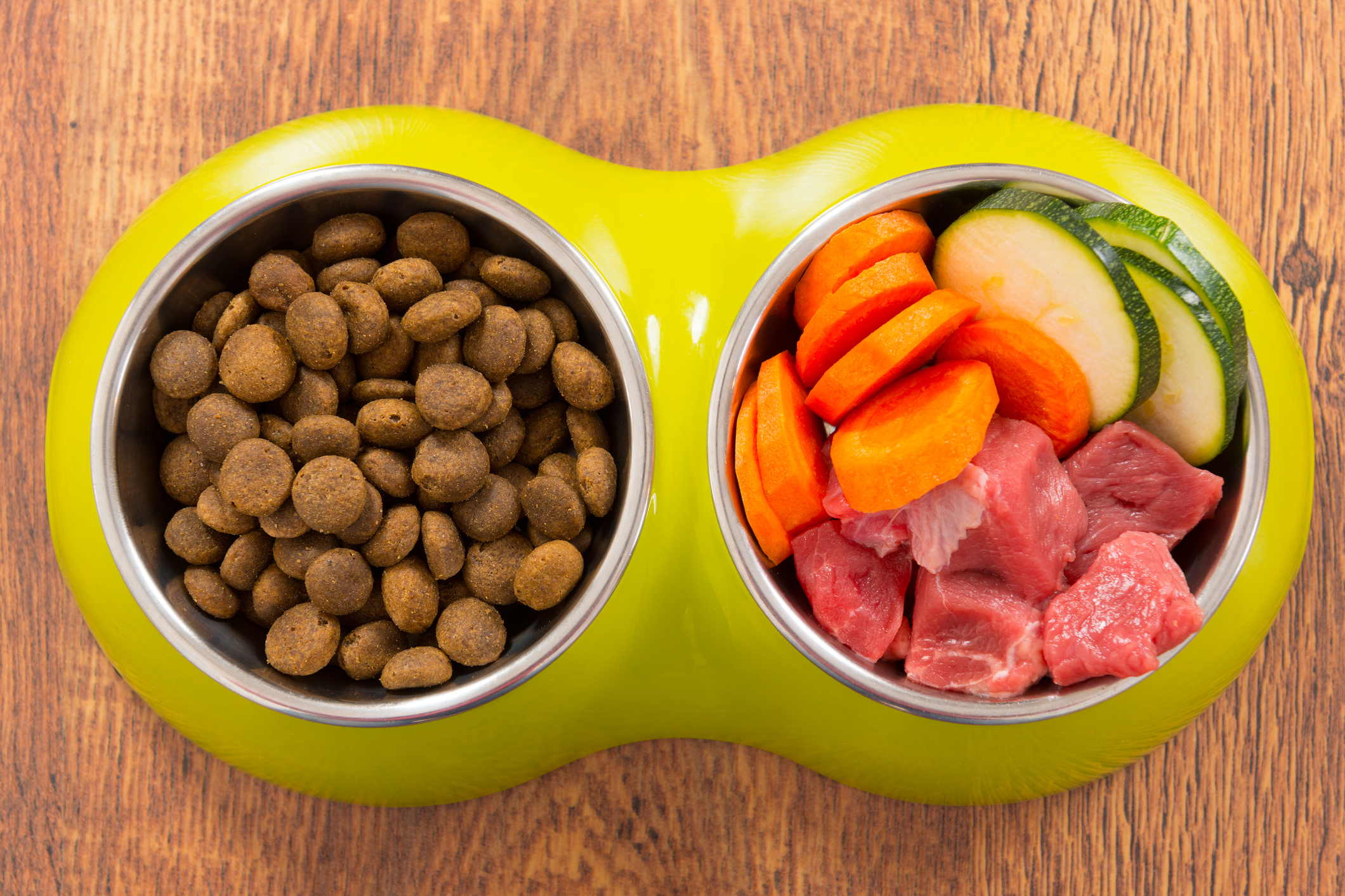 Natural and dry dog's food