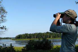 Birding (Photo by NCC)